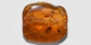 Polished Baltic Amber with Brachyceran Fly