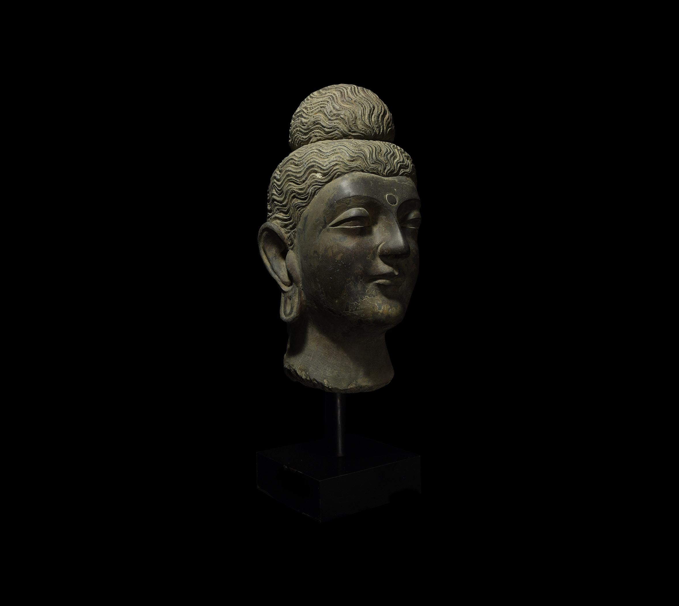 Large Gandharan Head of Buddha