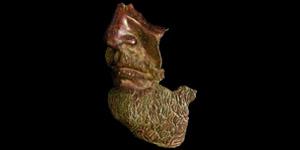 Roman Lifesize Statue Fragment