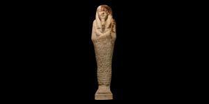 Egyptian Hieroglyphic Shabti