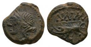 Celtic Iron Age Coins - Southern Gaul - Massalia? - Portrait Bronze