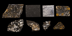 Natural History - Polished Meteorite Collection