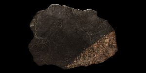 Natural History - Northwest African L4 (2793) Chondrite Meteorite