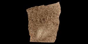 Natural History - Northwest African (NWA 2697) Chondrite Meteorite