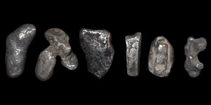 Silver Ingot Collection