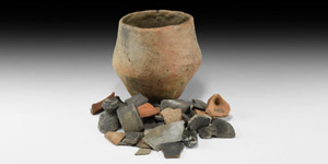 Neolithic Vessel and Shard Group