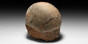 Fossil Hadrosaur Dinosaur Egg