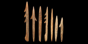 Bone Harpoon and Spearhead Collection