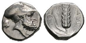 Lucania - Metapontion - Barley Ear Stater