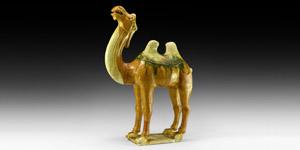 Tang Sancai-Glazed Camel Figurine