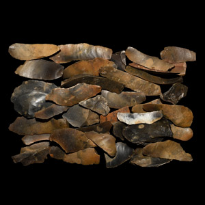 Oxfordshire Flint Tool Collection