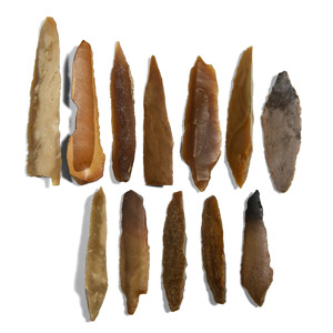 Projectile Point and Arrowhead Group