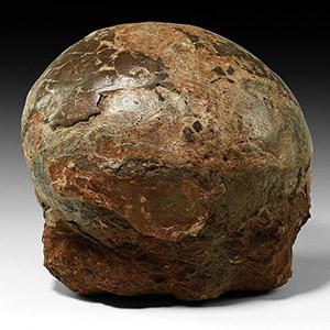 Natural History - Fossil Hadrosaur Dinosaur Egg