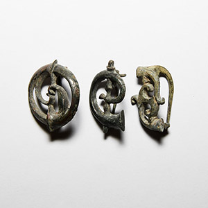 Trumpet Whorl Brooch Collection