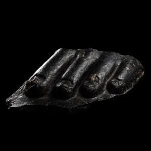 Black Granite Statue Toes