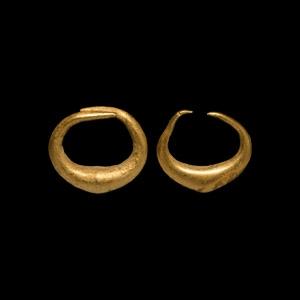 Gold Leech-Shaped Earring Pair