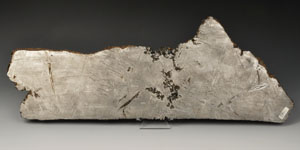 Geological Large Slice of Seymchan Meteorite