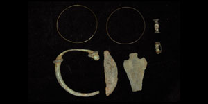 Bronze Age and Celtic Group
