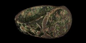 Greek Epigraphic Finger Ring