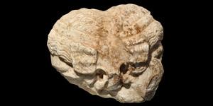 Roman Janiform Herm Fragment