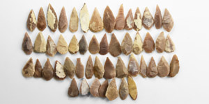 Stone Age 50 North African Knapped Arrowheads