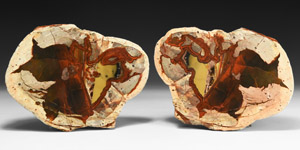 Natural History Australian Agate Creek Cut and Polished Thunder Egg Pair