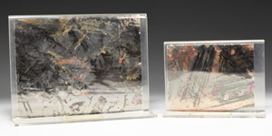 Natural History Picture Mica Panels with Stands