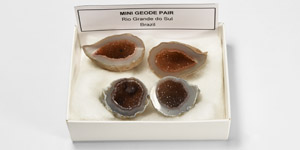 Natural History - Mini Geode Group