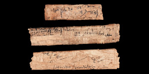 Egyptian Papyrus Scroll Group