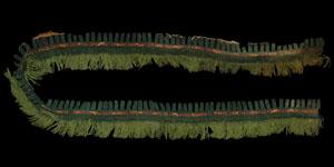 South America - Nasca/Nazca Culture - Woven Mantle Hem