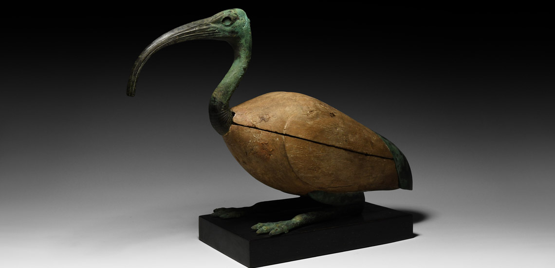 Resting Sacred Ibis £25,000 - £35,000