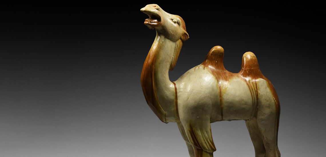 'The Desmond Morris' Chinese Tang Camel